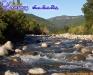 rio_cholguan_santaluciabajo